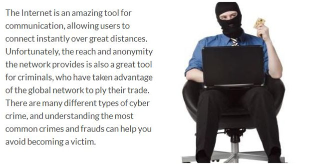 Computer crime credit card fraud essay